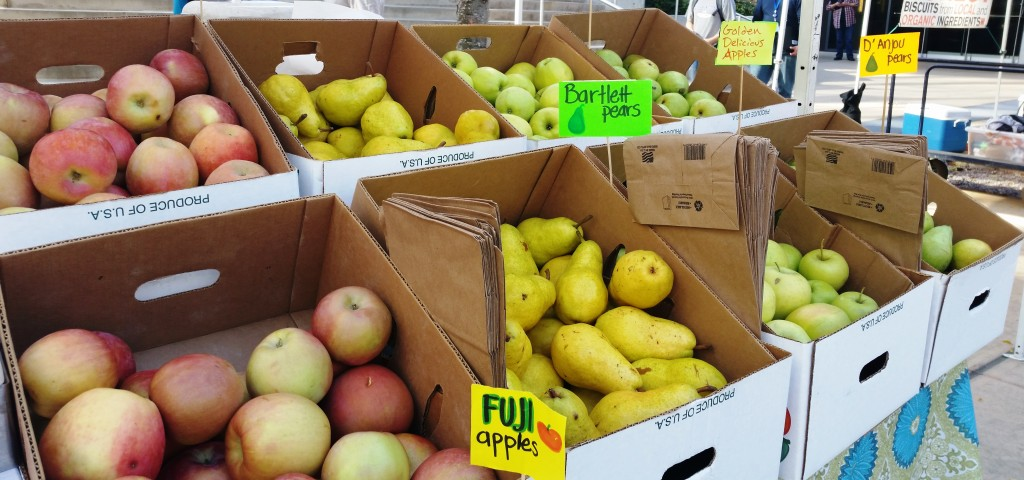 SLU Apples and Pears