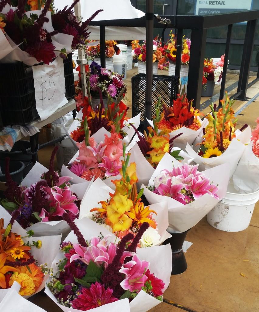 SLU  flowers 03
