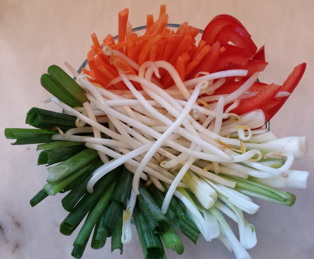 Carrots, red pepper, green onions, mung bean sprouts