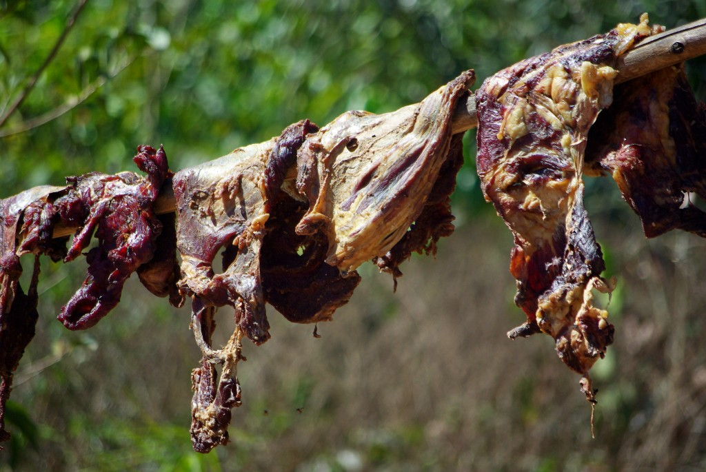 Carne Seca drying outdoors ~ Image courtesy of Otavio Nogueira (from Wikipedia Commons)