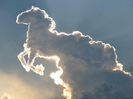 Horse_clouds