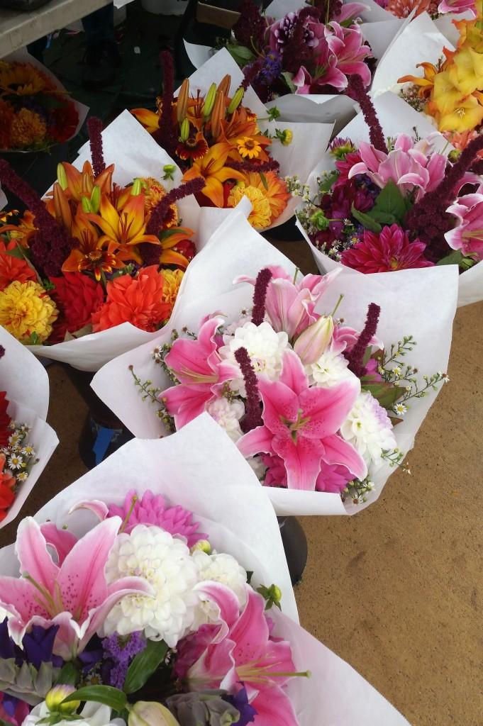 SLU  flowers 01